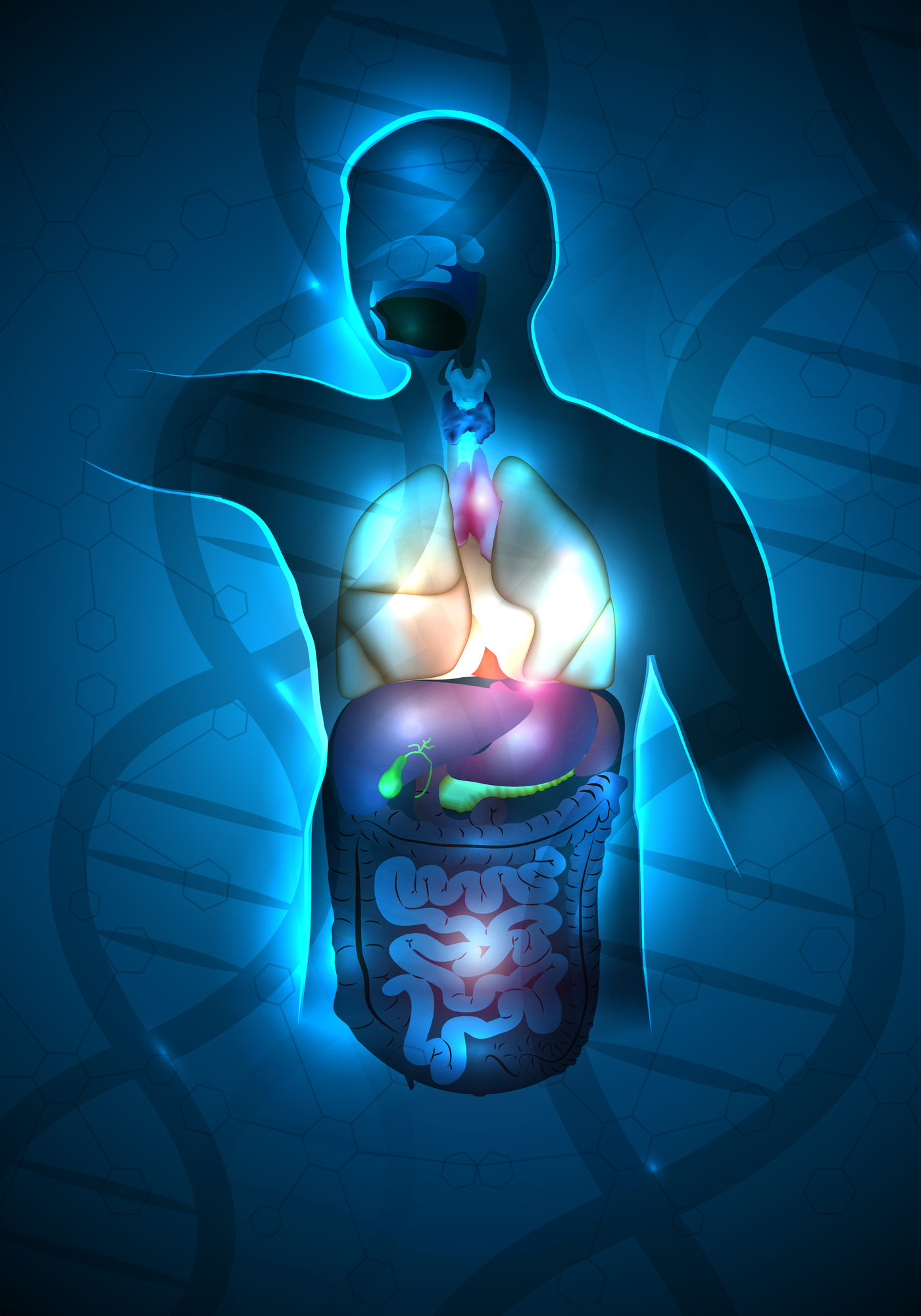 Human anatomy abstract design, DNA chain at the background. Beautiful deep blue color and sparkling lights.